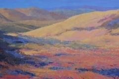 251. Kleurrijke woestijn       159x50      500 euro   (optie tot 31.07)
